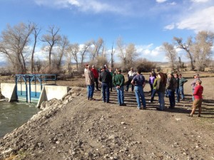 The first stop on the tour was the brand new and improved Poindexter Slough head gate. The old head gate only let a maximum of approximately 50 cubic feet per second (cfs) from the Beaverhead River into Poindexter. The new headgate can let in up to 500 cfs so that flushing flows can mobilize sediment deposits and flush them downstream. Managing sediment in Poindexter Slough is critical for maintaining a productive fishery.
