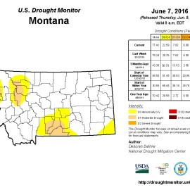 Beaverhead Drought Task Force June Update