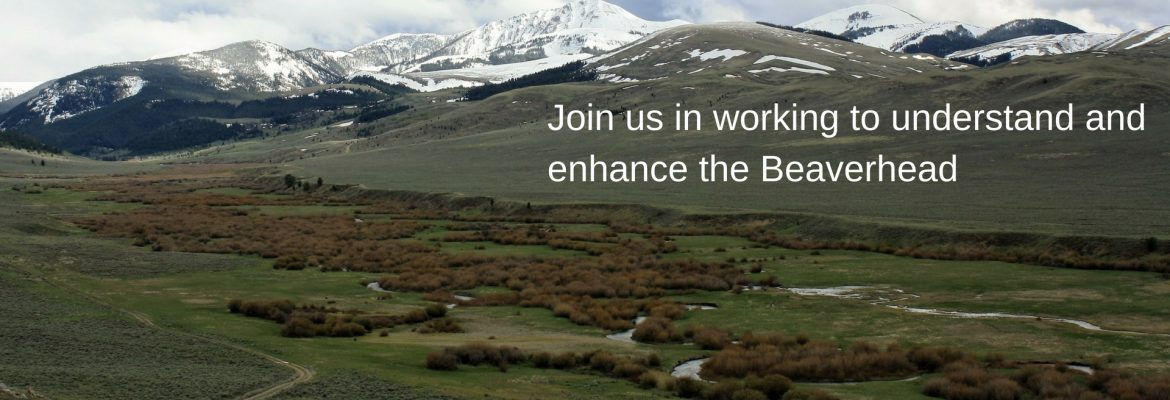 Join us in working to understand and enhance the Beaverhead